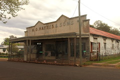 H.O. Haynes & Sons (Darren Schiller) Tags: cassilis newsouthwales abandoned architecture advertising building closed derelict disused decaying deserted dilapidated empty facade history heritage old rustic rural rusty smalltown shop store sign verandah