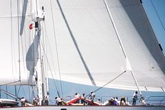 (Kellensbh) Tags: canon antilles caraibes fwi composition colors white race ocean sea island westindies caribbean sailingyacht boat yacht sailing sail regatta bucketregatta