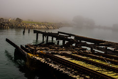 PR in Fog (21 of 102).jpg (Globalbirder) Tags: sfbay california bayarea landscape pointrichmond ferrypoint travel cityscape fog weather usa globalbirder