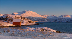 Golden hour on Sommarøya, Norway (AdelheidS Photography) Tags: norway norge norden scandinavia troms sommarøya noruega norvegia noorwegen norwegen winter coast snow boathouse mountains adelheidsphotography adelheidspictures adelheidsmitt canoneos6d canonef2470mmf4lisusm