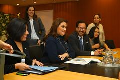 Meeting with María Dolores Agüero Lara (01911157)
