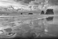 Stacks (D. Inscho) Tags: lapush washingtoncoast water washington seastack reflection pacificnorthwest beach