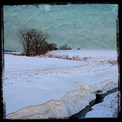 December Landscape (Dave Linscheid) Tags: snow winter field creek stream tree rural country farm agriculture texture textured watonwancounty mn minnesota usa picmonkey square frame