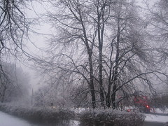 18th of December. (VERUSHKA4) Tags: street outdoor vue view city cityscape hiver winter tree nature snow neve branch trunk bough season light red day grey canon europe russia december moscow astoundingimage rue car landscape scape wintertime winterscape perspective bush