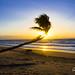 Sunrise Mission Beach