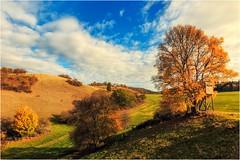 Herbst mit sanften Rundungen (linke64) Tags: deutschland natur landschaft wolken himmel herbst hügel hochsitz bäume baum jahreszeiten rahmen feld wiese berge hecke hecken busch büsche thüringen germany gras