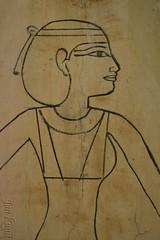 The Goddess Nut (j. kunst) Tags: italia italy 意大利 emiliaromagna 艾米利亚罗马涅大区 bologna 博洛尼亚 museocivicoarcheologico archaeologicalcivicmuseum museum coffin lid wood stucco polychrome mummy tashakheper drawing nut goddess deity egypt egyptian thirdintermediateperiod lateperiod 25thdynasty 26thdynasty