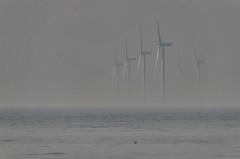 Farmed out (crusader752) Tags: windturbines rivermersey irishsea turbines gull sea liverpoolbay