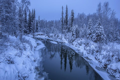 Tranquility (yan08865) Tags: alaska winter landscapes trees river pavlis flow canon tranquility snow nature earth sunset photographers wilderness beautiful traveler solo travel usa north fairbanks forest tree sky mountain