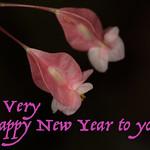 New Year Greetings thumbnail