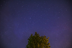 Lost Secret (Elzyy) Tags: astronomy astrophotography galaxy galactic milkyway stars starssky beautiful nature naturephotography horizon sky pink blue tree weather