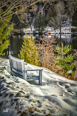 Best Chair By A Dam Site (Knarr Gallery) Tags: baysvilleontariocanada bench snow winter river lake lakeofbays lincolnlodge cottage dam ice knarrgallery knarrphotography knarrgallerycom darylknarr trees muskoka