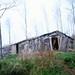 Volturara Irpina (AV), 1979, Abitazioni temportanee durante i lavori forestali.