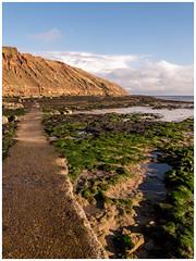 To the end_1080362 (HJSP82) Tags: path filey brigg seashore sea shore coast rocks cliffs