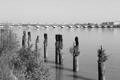 Pont de Pierre (1822) # 3 (just.Luc) Tags: bridge brug pont brücke bn nb zw monochroom monotone monochrome bw river rivier rivière fluss bordeaux nouvelleaquitaine france frankrijk frankreich francia frança gironde europa europe