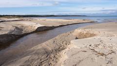PA210004-2 (keijo_segerstedt) Tags: balticsea estonia keibu läänemaa növa veskijõgi beach clear landscape october outdoor sand sea seaside water