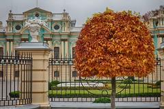 Maryinsky palace, Kyiv (vmonatko) Tags: architecture tree autumn ukraine kyiv kiev g9 g9x g9xmii g9xmarkii