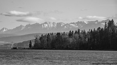 a short story about today's trip (ignacy50.pl) Tags: landscape blackandwhite monochrome trees forest water sky horizon panoramic mountains highmountains sony