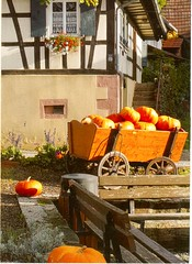 Postcrossing DE-7651298 (booboo_babies) Tags: alsace france pumpkins autumn autumncolors fall wagon postcrossing