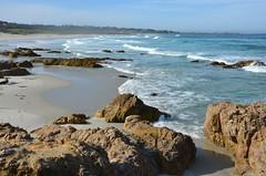 DSC_0254 (afagen) Tags: california pacificgrove asilomarstatebeach montereypeninsula asilomar beach pacificocean ocean