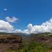 Beginning of Waimea Canyon State Park Hawaii