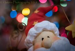 Hey Santa  (HMM) (13skies) Tags: happymacromondays santa bokeh happymacromonday santaclaus macro close dof depthoffield focus face hat macroscopic hmm eyes macromonday theme claus sonyalpha100 sony a100