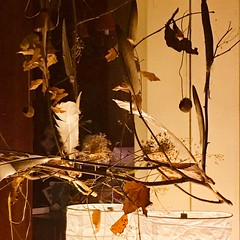 Automne (catimini) Tags: plume feather feuilles autumn