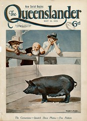 Illustrated front cover from The Queenslander May 30 1935 (State Library of Queensland, Australia) Tags: queensland statelibraryofqueensland pigs yearofthepig agriculturalshows farmers livestock magazinecovers