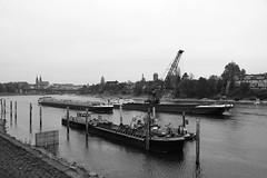 autumn Basel 16-11-2018 001 (swissnature3) Tags: basel switzerland autumn fall river rhine ship