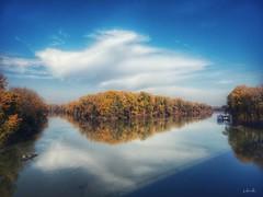 Tokaj (viktórianagynépetró1) Tags: autumn autumntime autumncolors trees tree november