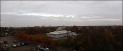 Day 317 (kostolany244) Tags: 3652018 onemonth2018 november day317 13112018 kostolany244 samsunggalaxys5 europe germany geo:country=germany month panorama trees 365the2018edition
