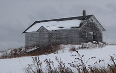 Grey skies, grey barn--Explored (yooperann) Tags: marquette branch prison upper peninsula michigan grey old barn snow cloudy day gloomy