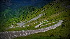 Mountain trail (lucjanglo) Tags: tatry poland europe travel