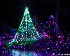 915A6322 (mikekos333) Tags: 2018 december christmas christmaslights coastalmainebotanicalgardens boothbay