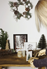 River visits aunt Ann before Christmas. (IamRina_) Tags: bjd doll abjd bjdboy christmas decoration