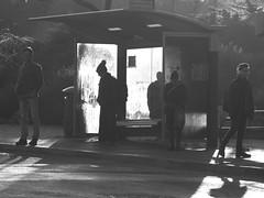 Passengers at First Light B&W (zeevveez) Tags: זאבברקן zeevveez zeevbarkan canon silhouette bus station bw