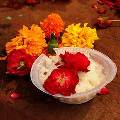 Ofrenda (PoLiTvS) Tags: 2011 2011india1 agra asia digital flores formatos india lugares monumentos plantas tumbas viajes