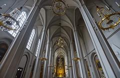 Nave (Dmitry Shakin) Tags: austria vienna column church nave vaulting augustinerkirche
