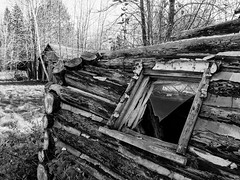 Twisted remains (Wicked Dark Photography) Tags: bw wisconsin abandoned autumn blackandwhite cabin decay derelict fall logcabin monochrome ruin rurual
