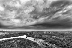A Cold Day on Salthouse Marsh (andybam1955) Tags: coastal rural salthousemarsh northnorfolk landscape monochrome norfolk clouds