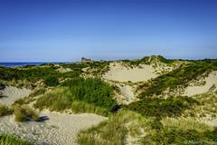 Un air d'été. (musette thierry) Tags: zuydcoote musette thierry d800 côtedopale plage hautsdefrance bord mer dûne
