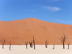 P1107653-LR (carlo) Tags: namibia panasonic dmcg9 g9 africa desert deserto landscape africanlandscape sossusvlei deadvlei
