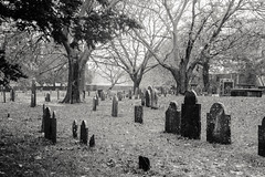 (michellezigler) Tags: graveyard cemetery spooky blackandwhite canon outside autumn fall november salem massachuettes witch witches ma headstones