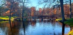 Captivating Fall (SurFeRGiRL30) Tags: circlevillepark ny nys newyorkstate upstate upstateny pond bridge fall autumn ripples water lake beautiful nature fallfoliage fallcolor fallcolors fallscenery scenery scenic reflection