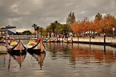 Autumn in Aveiro (Behappyaveiro) Tags: aveiro portugal europa europe autumn outono autumncolours coresoutono moliceiros barcos boats portuguesevenice venezaportuguesa trees reflections reflexos goldenbrown