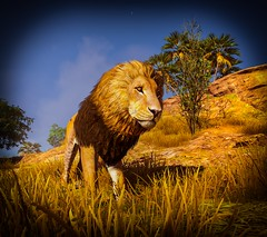 Assassin's Creed Origins (DunnoHowTo) Tags: cheatengine extreme ninja assassin origins 2017 egypt action adventure ptolemaic period ancient video game computer gaming medjay bayek siwa screenshot templar ice photoshop ubisoft parkour open world helix animus abstergo history historical city assassin's creed otisinf injectable camera alexandria lion lions