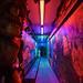 Krakatoa Bar, Aberdeen (MeowMixed) Tags: krakatoa dive bar aberdeen neon tiki
