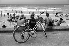 Sydney summer 2018  #932 (lynnb's snaps) Tags: 35mm apx100 manly om4ti olympus zuiko35mmf2 bw beach film summer agfaapx100 rodinal bicycle manlybeach sydney australia suft swimmers watching people sand sunbaking bodysurfing bodysurfers waves ocean horizon blackandwhite bianconegro biancoenero blackwhite bianconero blancoynegro noiretblanc schwarzweis monochrome ishootfilm 2018 ©copyrightlynnburdekinallrightsreserved filmfilmforever