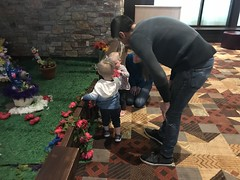 "2018-03-24-to-30-minnesotta-to-see-adam-and-sara-curl-with-family-at-hotel_31076108368_o • <a style=""font-size:0.8em;"" href=""http://www.flickr.com/photos/109120354@N07/45494715374/"" target=""_blank"">View on Flickr</a>"