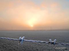 Frosty Glengarnock Barbs Sunset (g crawford) Tags: frost frosty winter wintery wintry cold weather sky skies garnock valley garnockvalley dalry glengarnock kilbirnie crawford wire barb barbed barbedwire sunset sundown misty mist fog foggy ayrshire northayrshire